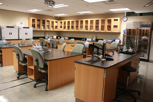 Science Laboratory Institutional Casework Arizona New